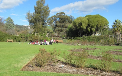 waite, arboretum, adelaide, waite precinct, urrbrae, aboriginal plants, university of adelaide, bush tucker, picnic, labyrinth