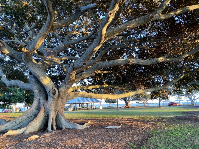 The many facilities and natural beauty of Wellington Point Recreation Reserve make it a popular destination for families across South East Queensland