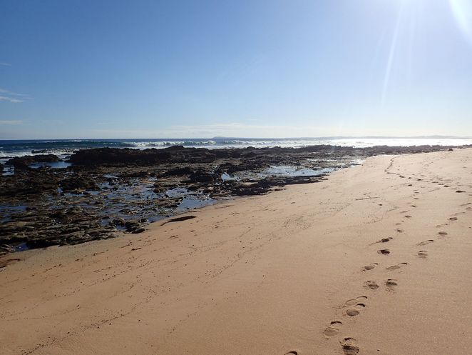 wonthaggi, beach, heathland, walks, south gippsland