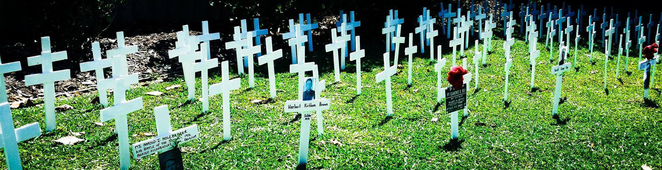 ANZAC Cottage Field of Remembrance white crosses