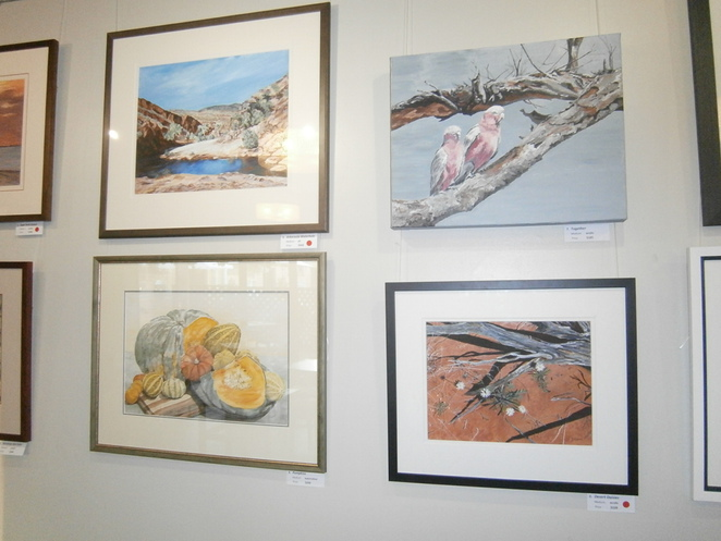 Artisan, art, exhibition, landscapes,animals, galah, acrylics, paint, pastel, blackwood, dinning, coffee, cafe,