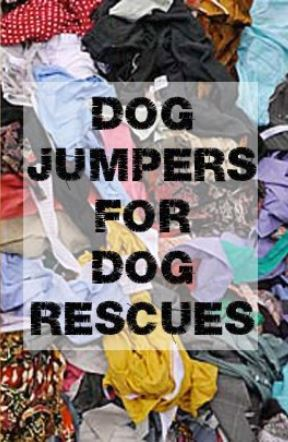 Dog jumpers, sew make create, dog pound, recycled jumper,