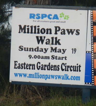 RSPCA Million Paws Walk Geelong 2013
