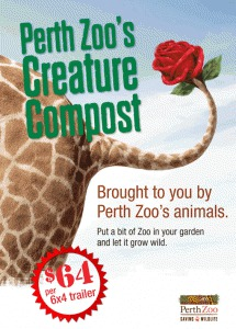 giraffe, zoo, animal, manure, creature, compost, perth