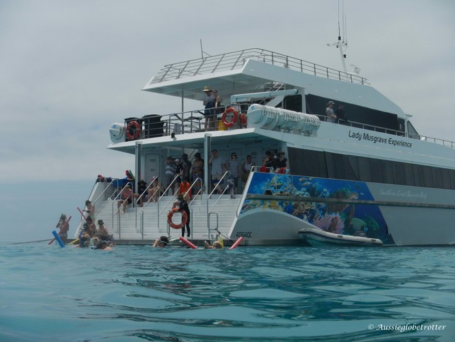 Lady Musgrave Experience, Main Event, boat, Cataman, Cruise, Day Trip, Bundaberg, turtles