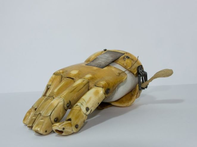 leviathan, whales, history, history of whales, south australia, whaling, maritime museum, whaling, port adelaide, prosthetic hand
