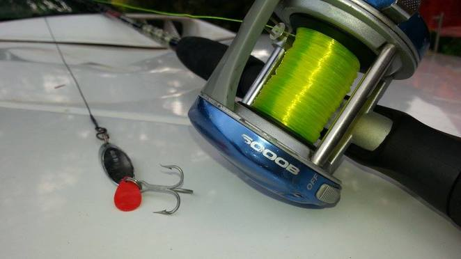 Lure, Ugly Stick, Fishing, Perth, River, BCF, Overhead, Baitcaster, Reel