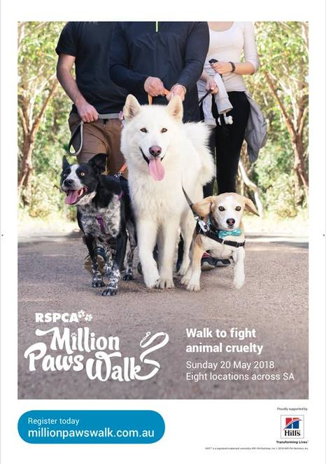 million paws walk sa 2018, murray bridge, charity, fundraiser, community event, fun things to do, fun walk, fun run, health and fitness, doggy calendar, bonython park, entertainment, food stalls, doggy games, free pet advice
