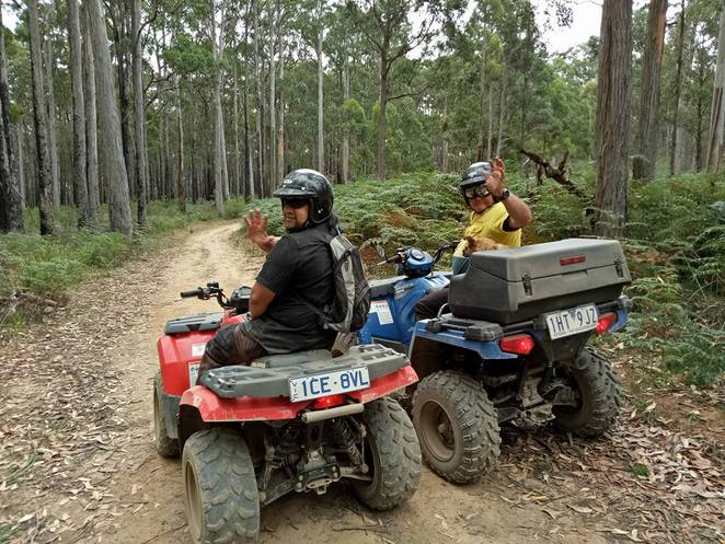 quadbikes, tours, adventure, daytrip, sport, fun, stateforest, nature, family day out, fun, dog, daylesford