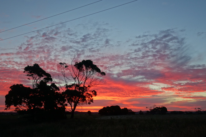 smithton,tasmania,sunset,clouds,pink,beautiful,sky,trees