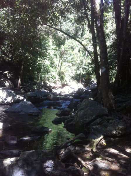Stoney Creek, Cairns