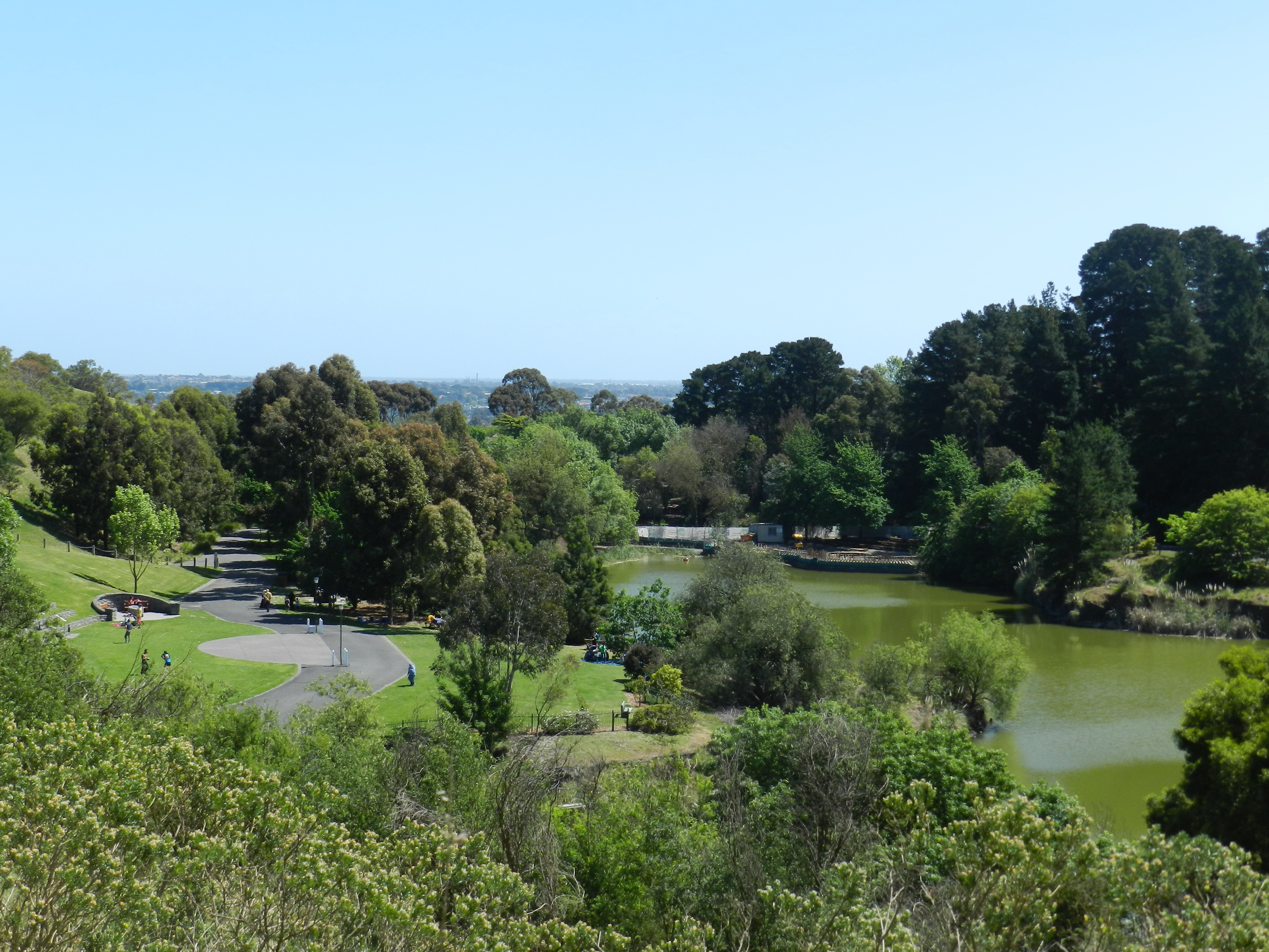 top 10 things to do at wilson botanic park