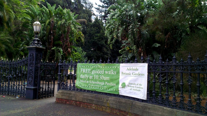 adelaide botanic garden, free guided walk, adelaide tourist attractions, free things to do in adelaide