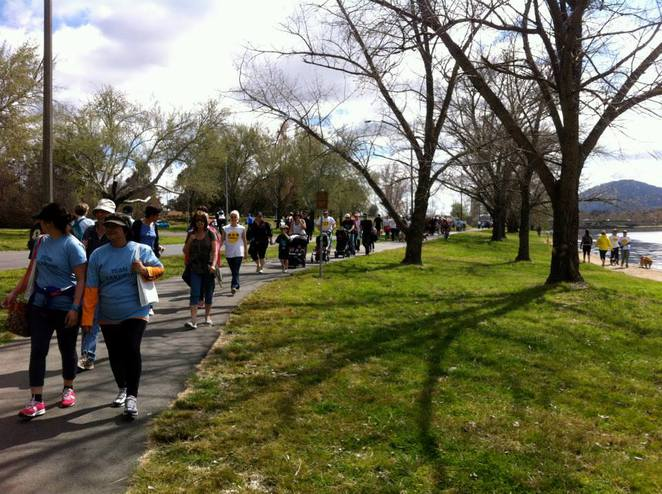 Alzeimers Australia Memory Walk and Jog 2015, Canberra