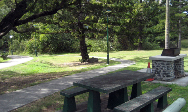 Wood fired barbecues at Anzac Park in Toowong