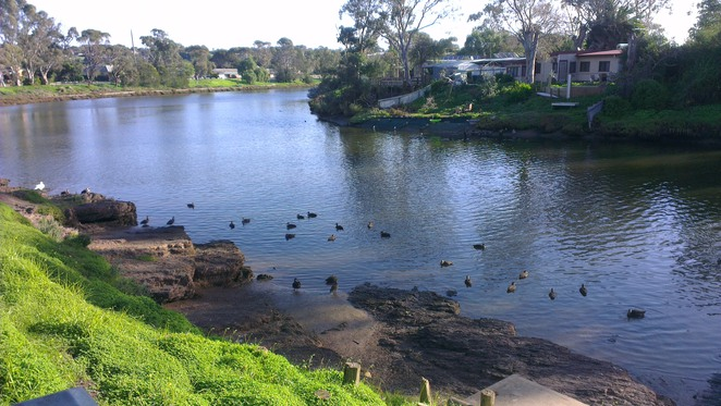 market square, park, old noarlunga, onkaparinga river, ducks