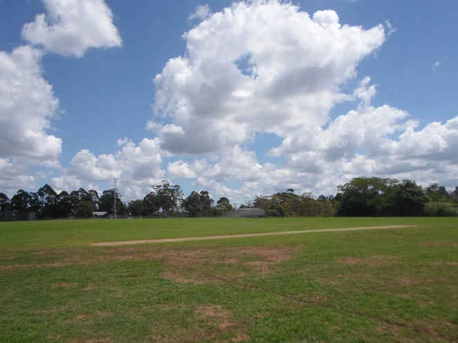 montview oval, hornsby heights, park, cricket