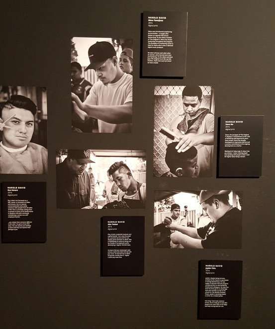 Photography, exhibition, youth, male, art