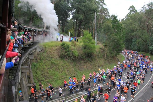 Puffing Billy's Great Train Race