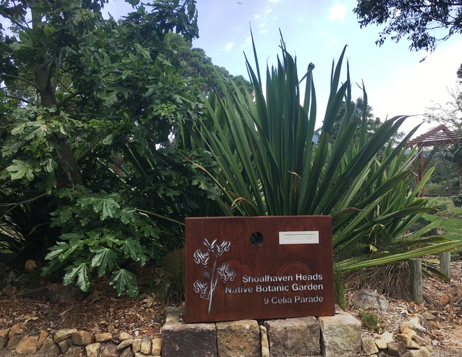 Shoalhaven Heads Native Botanic Garden