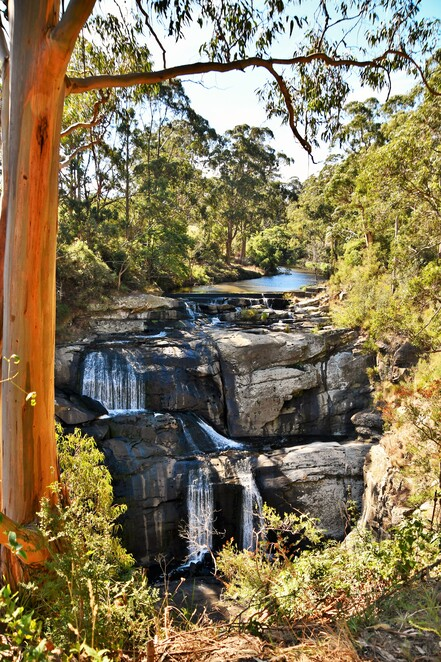 Toora,Weekend getaway,Visit Gippsland,Visit Prom Country,Visit Victoria,Things to do in Toora,South Gippsland Getaways,Escape Melbourne,Holiday in Victoria,Gippsland holidays,