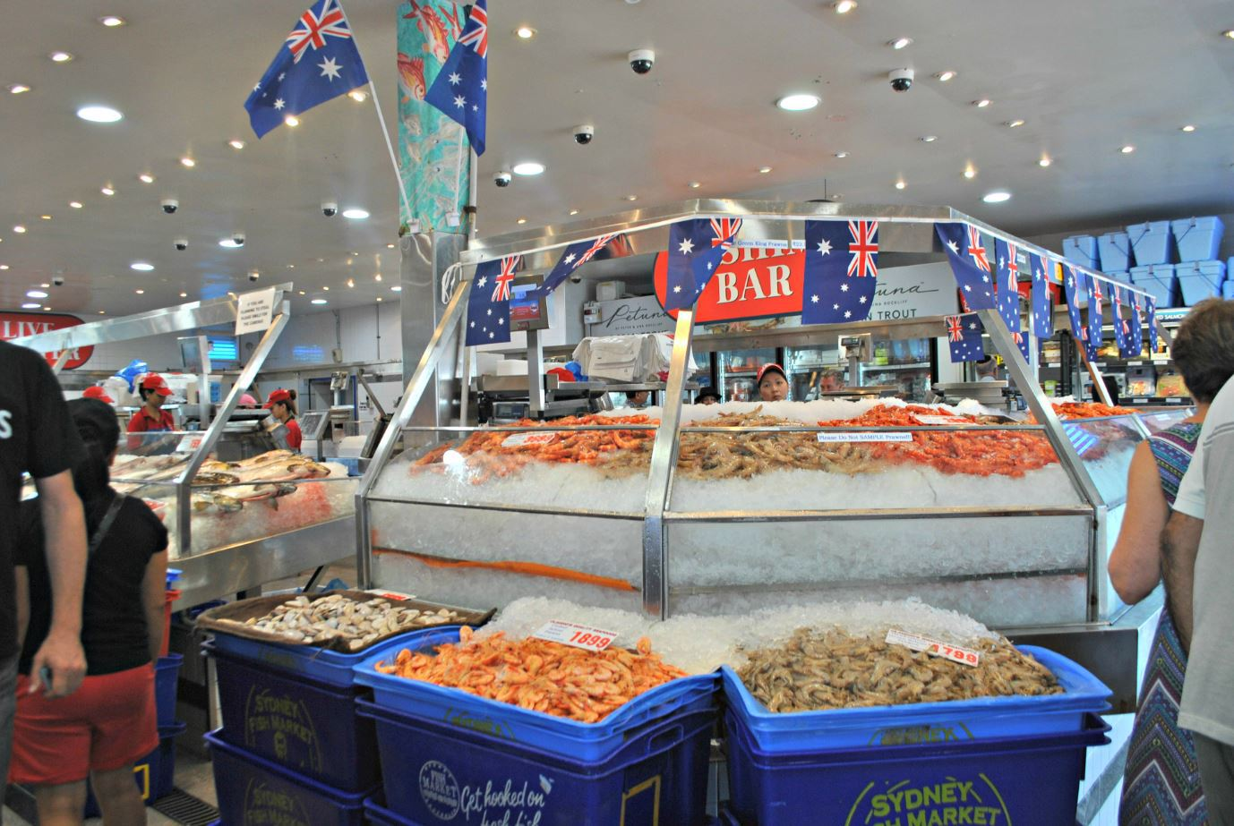 Australia day at sydney fish market sydney for Seafood fish market