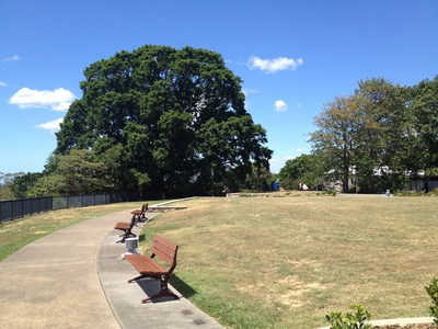 Buderim Lions Park is a beautiful place for a picnic