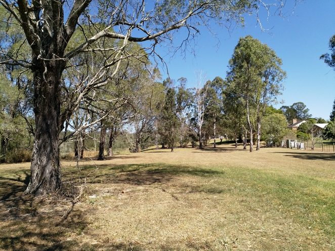 A view of Church Road Park on the Yuraba Walk. Bush on one side, and peoples' properties on the other. There are no views of the river.