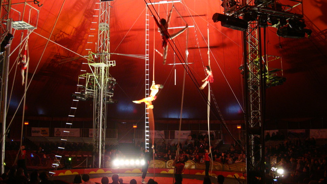 Circus, high wire,trapeze,performance, circus Canada