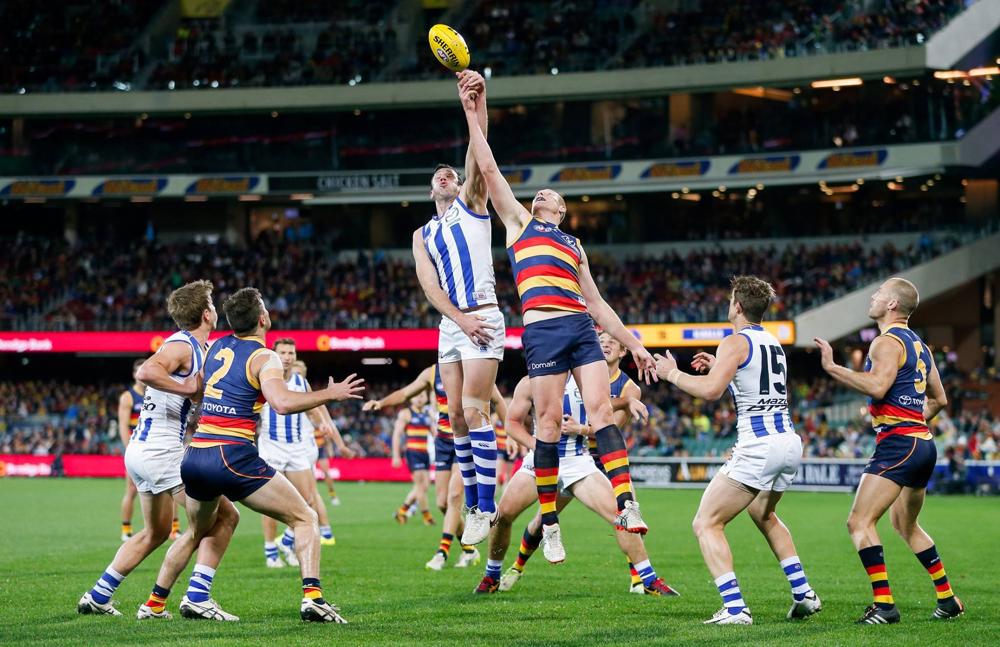 adelaide crows - photo #35