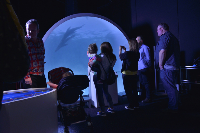 deep oceans, exhibition, scienceworks, museum, melbourne, port phillip bay, aquarium