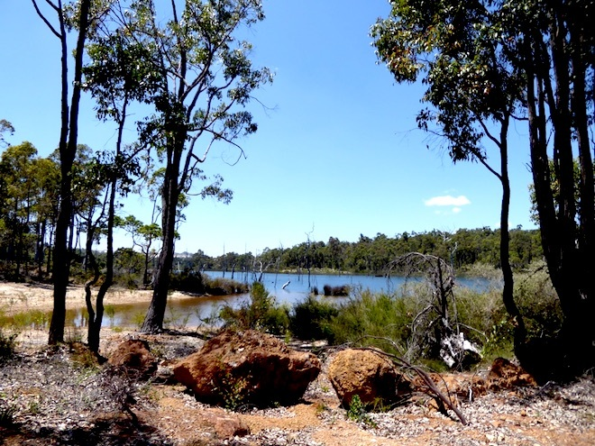 free walks greenbushes WA, shwenke s dam, green bushes pool