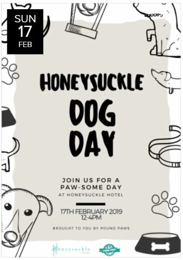 honeysuckle dog day, 2019, newcastle, rescue, dog adoption, day out