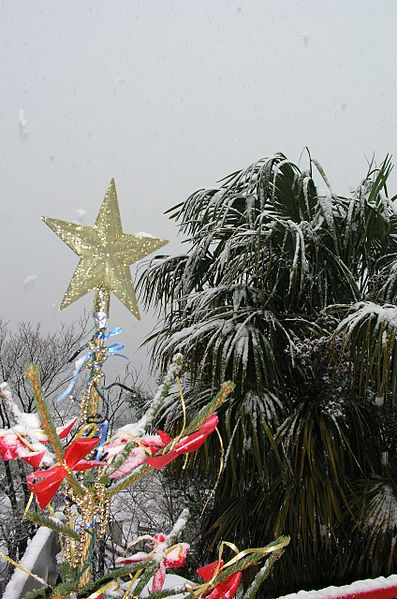 How to Have a White Christmas in Australia