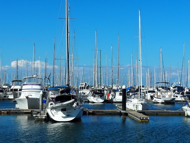 Manly, Boating, Harbour