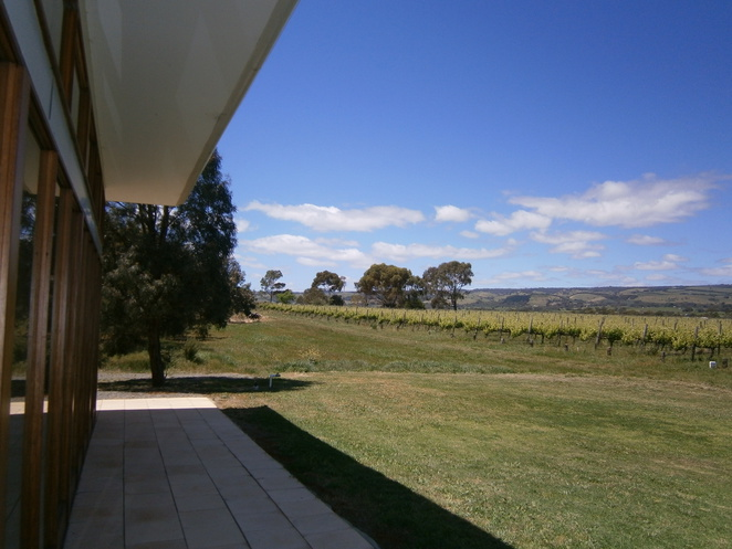 mitolo wines, mclaren vale, wineries, jesters, amarone, the producers