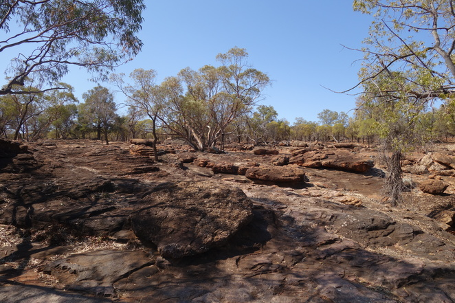 mount,grenfell,nsw,aboriginal,indigenous,landscape,desert,rocks,trees,art,site