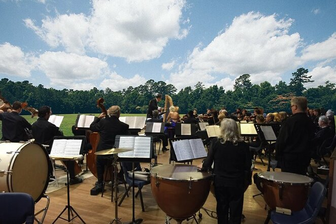 Orchestra in the Park
