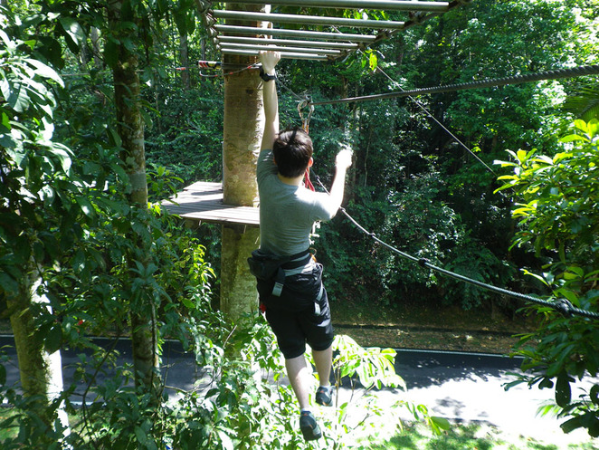 skytrex adventure monkey bars