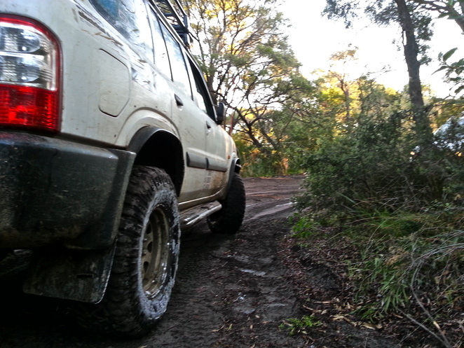 4wding, nissan patrol, southern forest tracks, great southern trails, forest trails wa, 4wding in wa, 4x4 wa