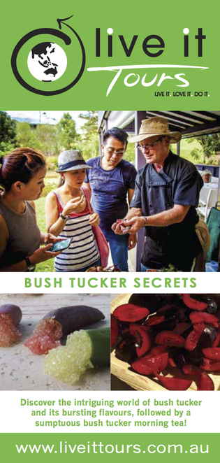Bush Tucker Secrets, Live It Tours, live it, love it, do it, every Wednesday at 10.00am, local bush food expert, Sunshine Coast hinterland, Australian indigenous culture, Eumundi Markets, Imperial Hotel - Eumundi, morning tea, two hours, physical level easy