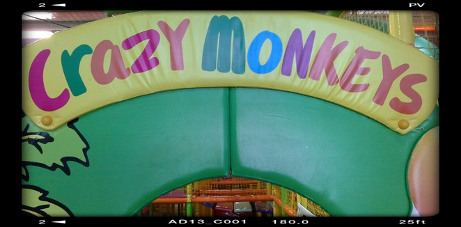 crazy monkey's play cafe