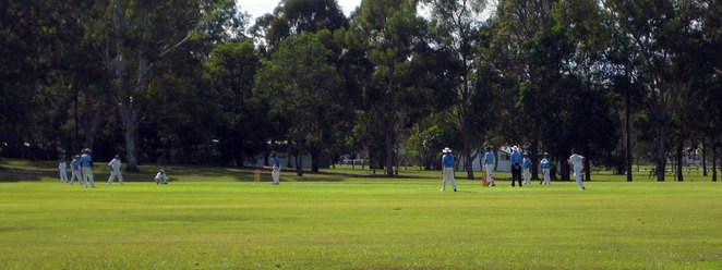 Cricket in Chermside