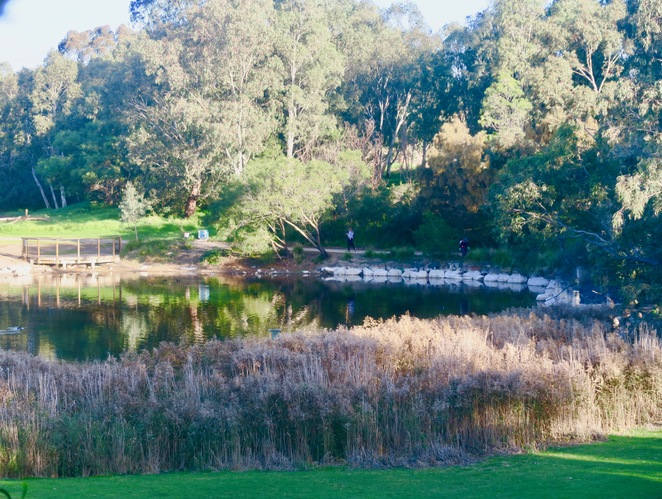 Darebin Parklands