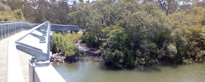 eprapah creek, fodder forest, walking track, exercise, off-leash dog park, family area, picnic area