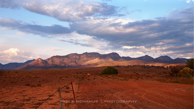 Flinders Ranges from Merna Mora Station