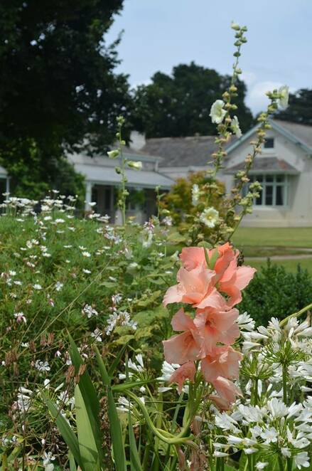 Coombe Cottage gardens