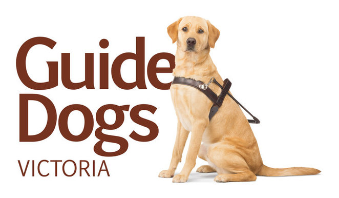 Guide Dogs Victoria Howl-o-ween Port Melbourne