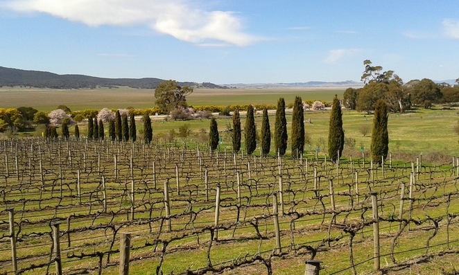 lake george, lerida estate winery, canberra, collector, ACT, NSW, federal highway,
