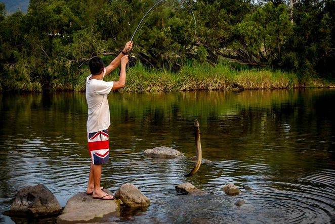 mann river, fishing, eel, northern nsw, camping, grafton, glenn innes, broadwater campground, cangai, fishing, relaxing,